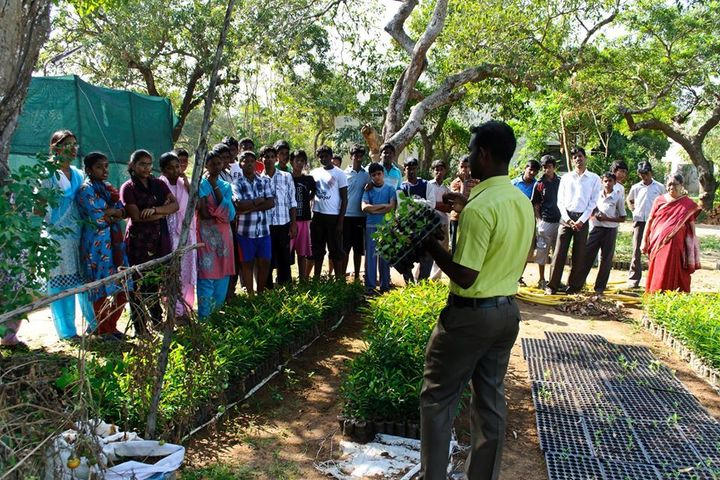 Geetha Matriculation Higher Secondary School-Tree Plantation