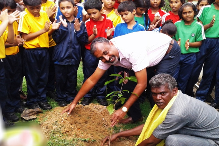 Jain Public School Korba-Tree-Plantation