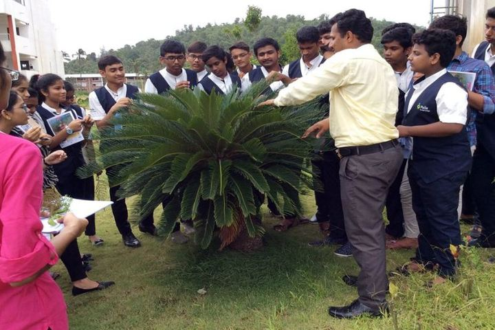 Pana PU College-Tree Plantation