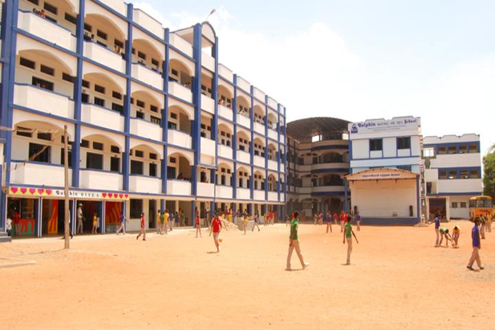 Dolphin Matriculation Higher Secondary School-Playground