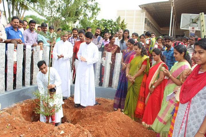 Chavara Vidya Bhavan Matriculation Higher Secondary School-Plantation