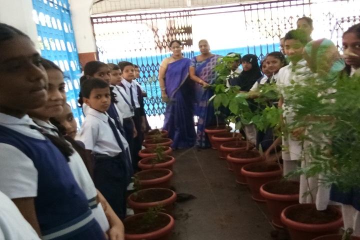 Vani High School-Plantation
