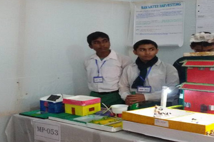 Sehara Bazar Chandra Kumar Institution-Science Exhibition