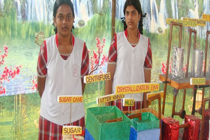 Swarna Bharathi High School-Science Exhibition