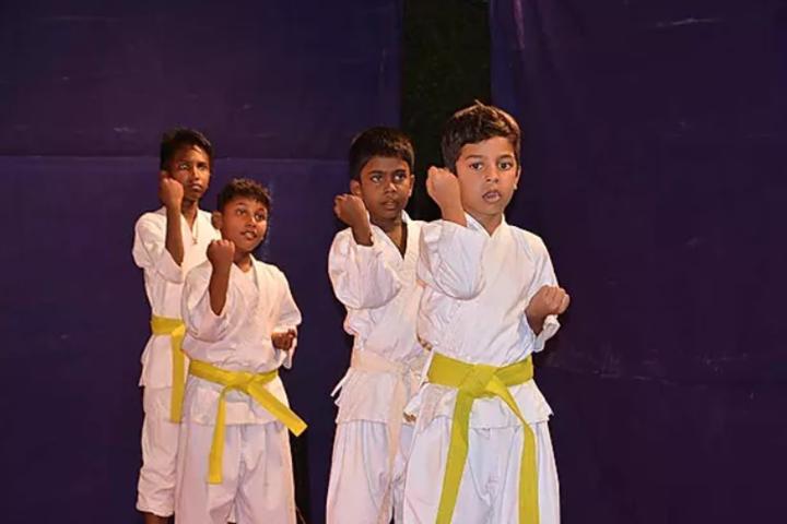 Little Diamond Matriculation School-Karate