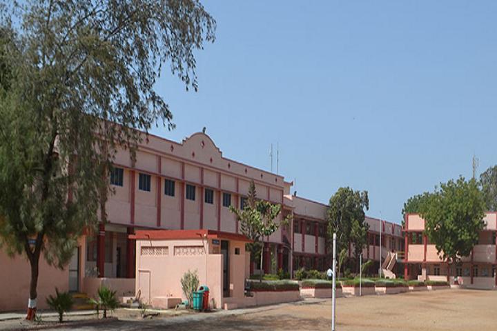 Aditya Birla Public School-Play Ground