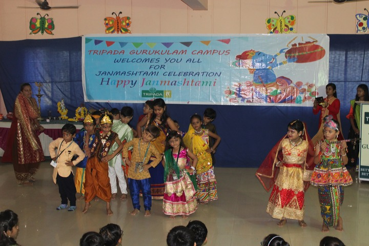 Tripada Gurukulam-Dance