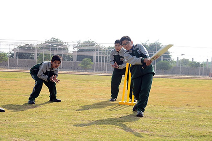 Delhi Public World School-Cricket