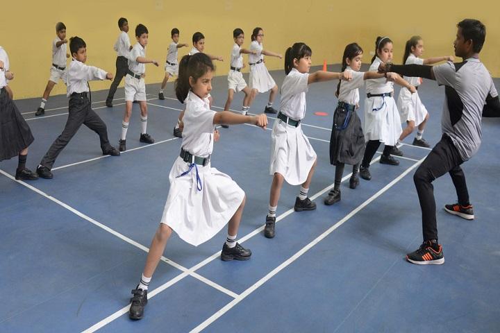 Delhi Public World School-Karate