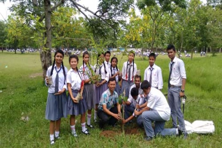 Don Bosco School-Tree Plantation