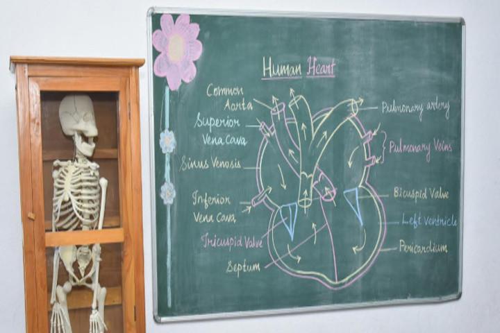 Chellammal Matric Higher Secondary School-Biology Lab