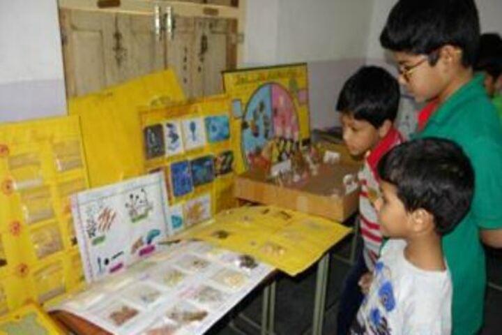 Montfort School-Science Exhibition
