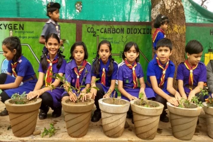Kendriya Vidyalaya Kirandul-Tree plantation