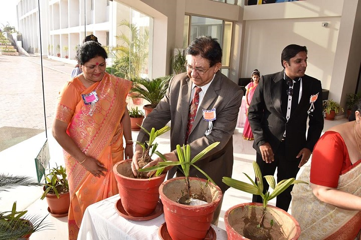 Delhi Public World School-Plantation
