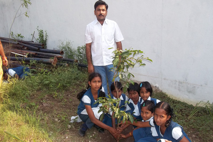 Angel School And Emmi Junior College-Plantation
