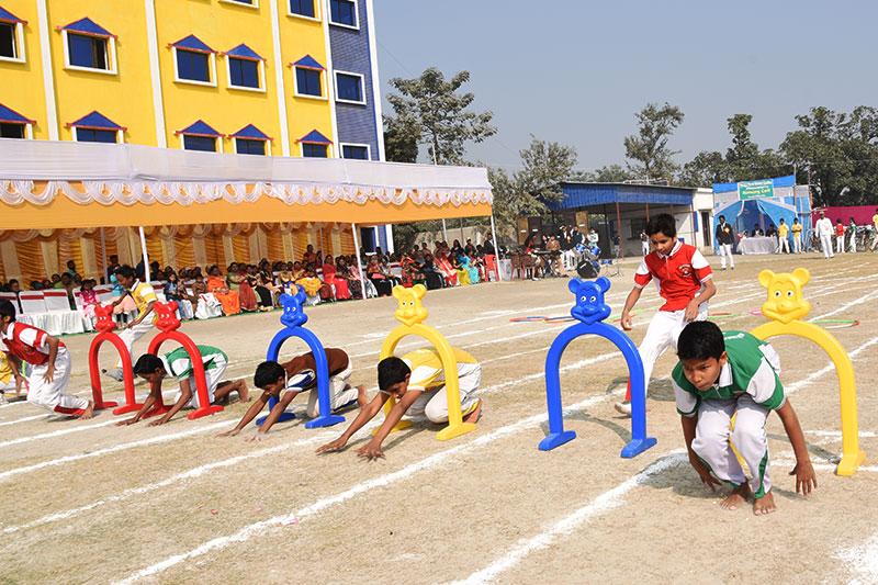 Alok Bharati Shikshan Sansthan: Activities
