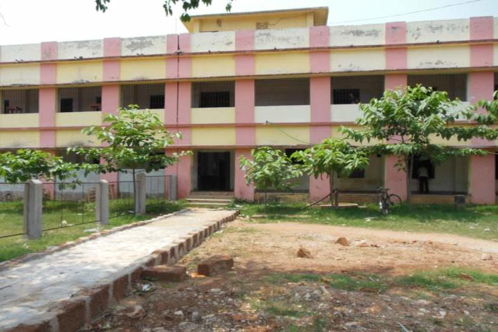 D R Nayapalli College-Garden