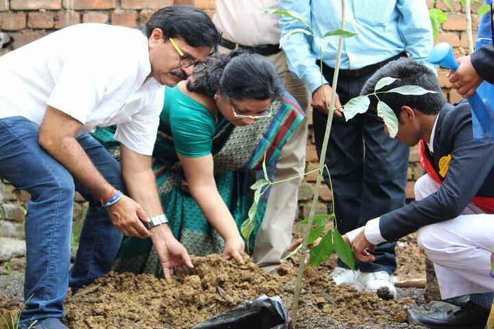 M G M Higher Secondary School-Tree Plantation1