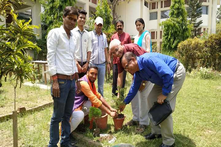 Marwari College-Tree Plantation