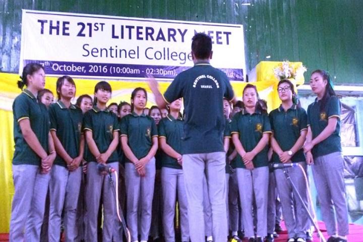 Sentinel College-Literary Test