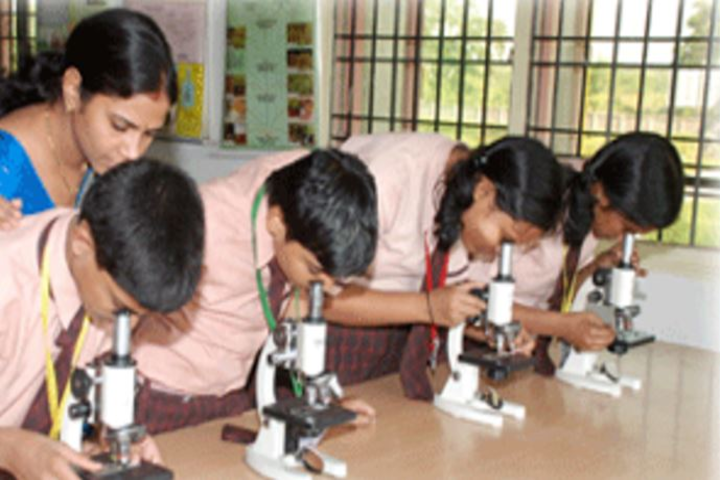 Mintu International Public School-Lab1