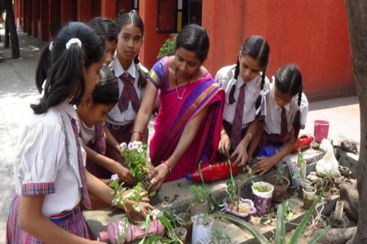 Monnet DAV public school-tree plantation