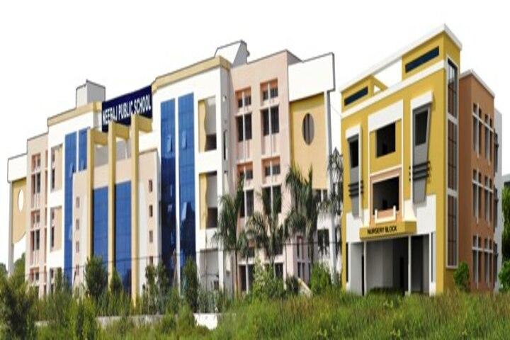 Neeraj Public School-building