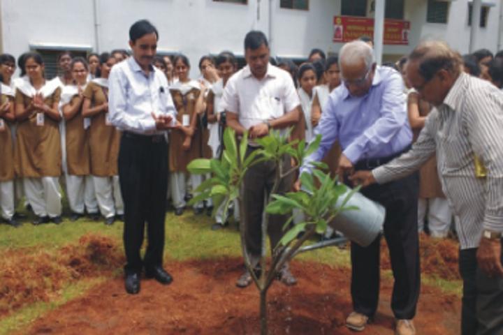 SVIC Jnanodaya Pre University College-Plantation