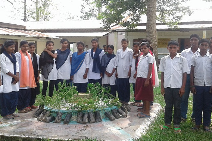 Nehru Vidyapith High School-Plantation