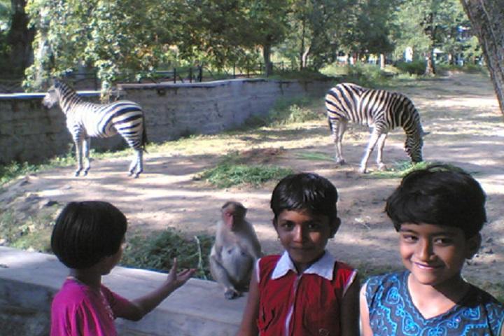 Pravara Kanya Vidya Mandir  and Junior College-Tour