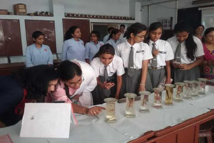Dharampeth M P Deo Smruti Science Junior College-Lab