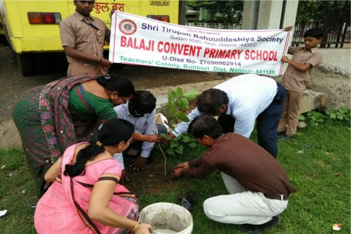 Balaji Convent Junior College-Tree Plantation