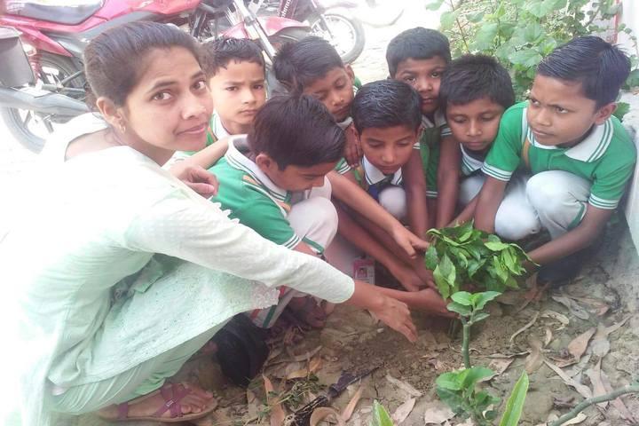 Bright Career S.S. Inter College- Tree Planting