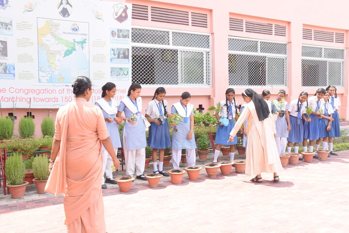 Carmel Girls Inter College-Tree Planting