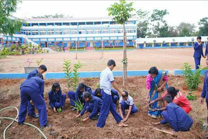San International School-Tree Planting