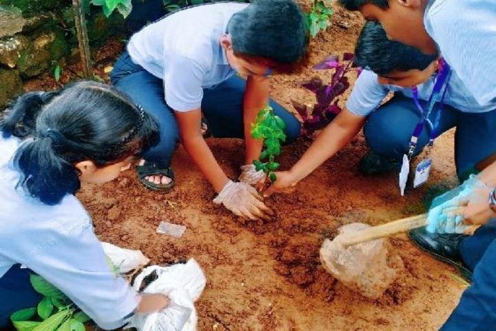 Mulamoottil Central School-Tree Planting