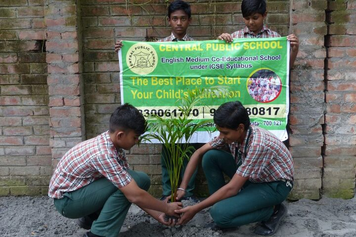 Central Public School-Tree Planting