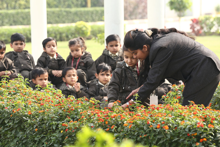 The Aryan International School-Garden Area