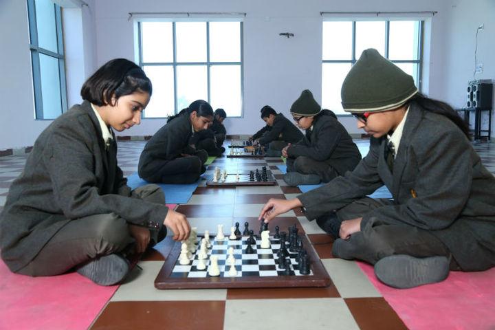 The Aryan International School-Indoor Games