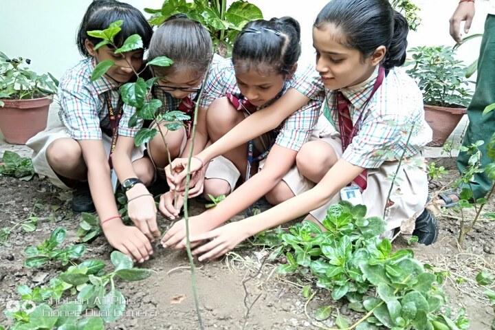 Adarsh Vidya Bhawan-Tree Plantation