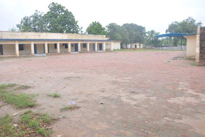 Air Force Senior Secondary School-Campus-View