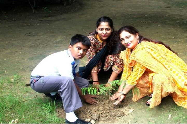 Arwachin International School-Tree Plantation