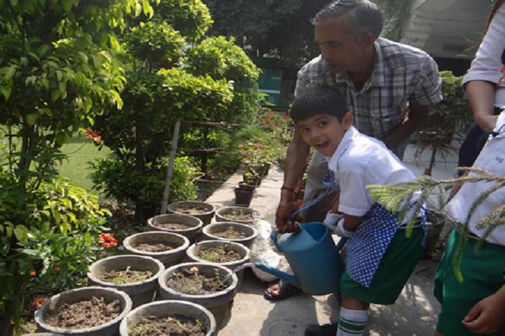 Bhatnagar International School-Tree Plantation