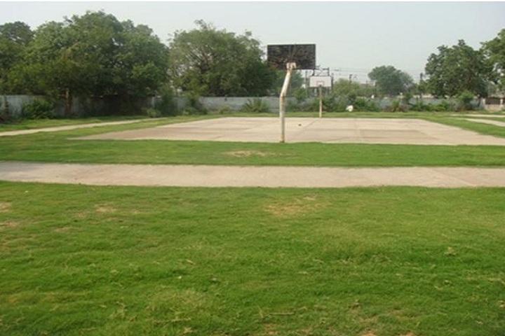 D C M Boys Senior Secondary School-Basketball Court