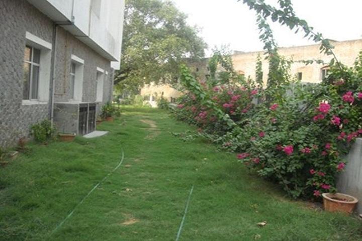 D C M Boys Senior Secondary School-Garden