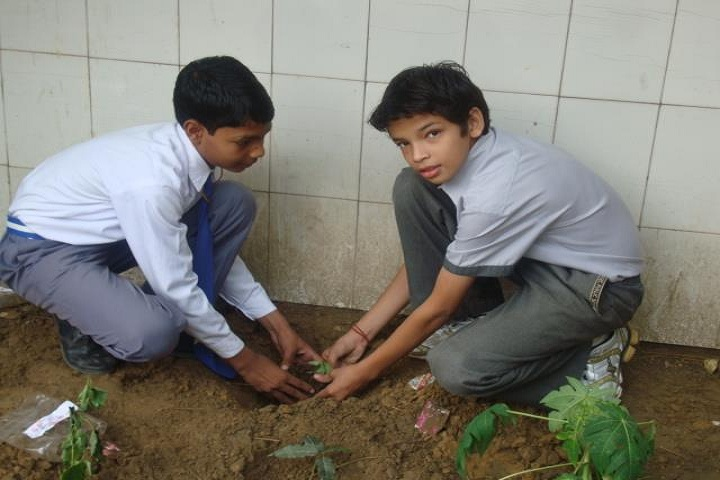D H M Public School- Tree Plantation 2