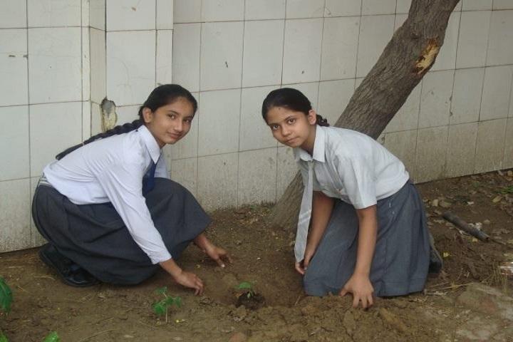 D H M Public School- Tree Plantation 3