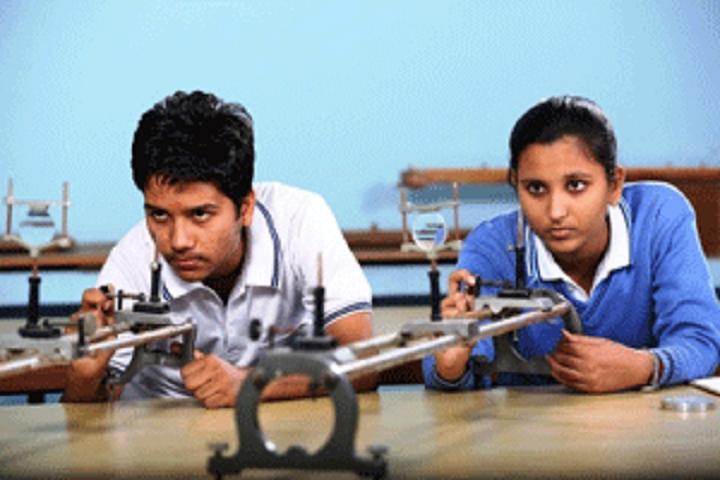 Decent Public School-Physics-Lab