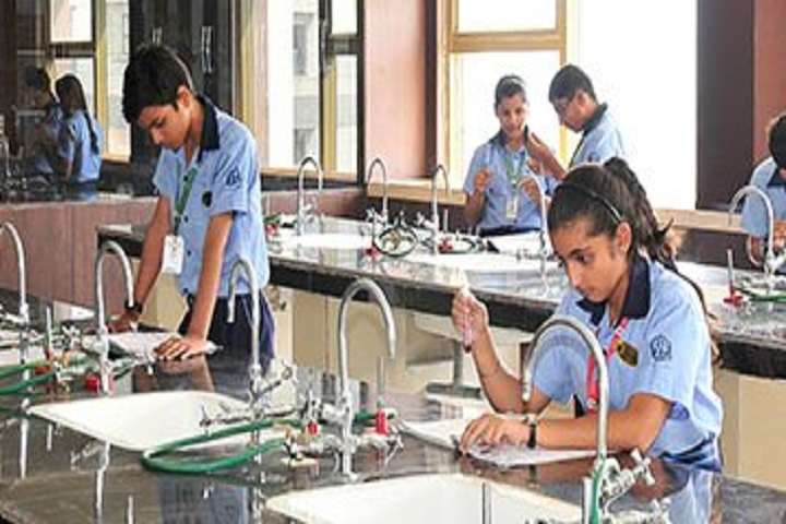 Delhi International School-lab