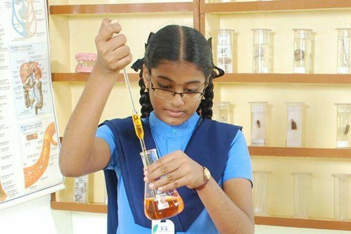 Q I S U P School-Lab